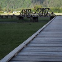 Estuary Boardwalk